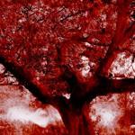 Tree – Franck Landron