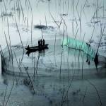 Yann Arthus-Bertrand, Celebrates Life