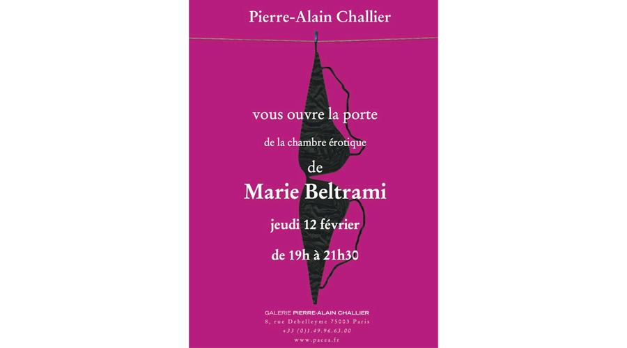 Galerie Pierre Alain Challier