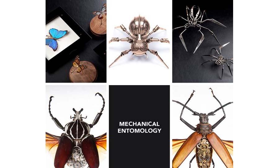 Entomologie mécanique
