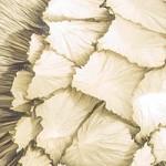 Junior Fritz Jacquet - Caldera 2 - tableau de papier lumineux
