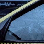 Chauffeur de taxi, Newsha Tavakolian
