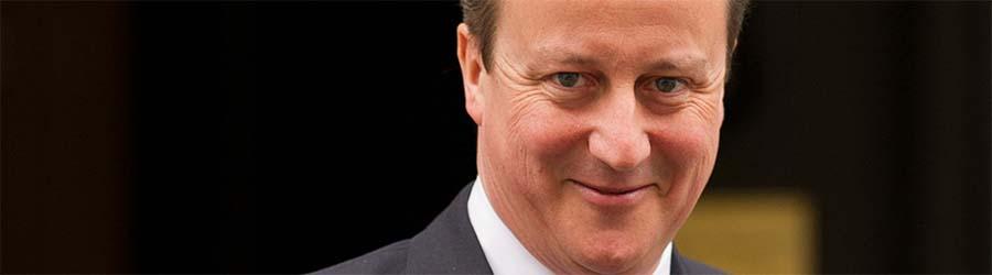 David Cameron, flipside