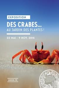 Exposition Des Crabes... au jardin des plantes