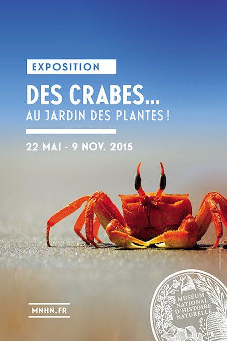 Des crabes au Jardin des Plantes