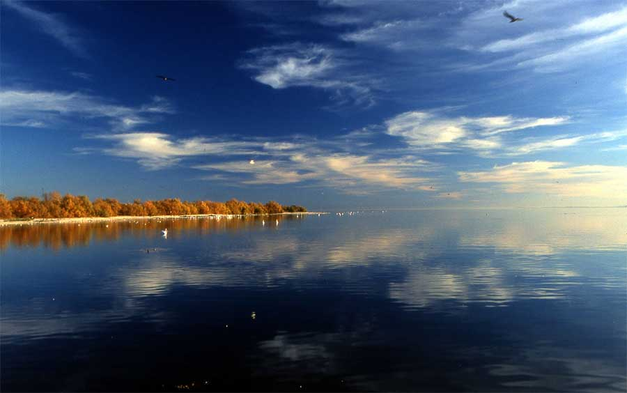 la Salton Sea en Californie