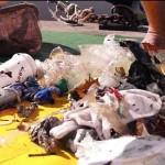 The Seabin Project - Les déchets