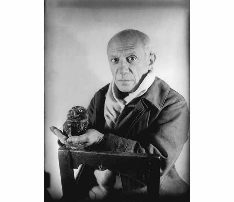 Picasso et sa chouette