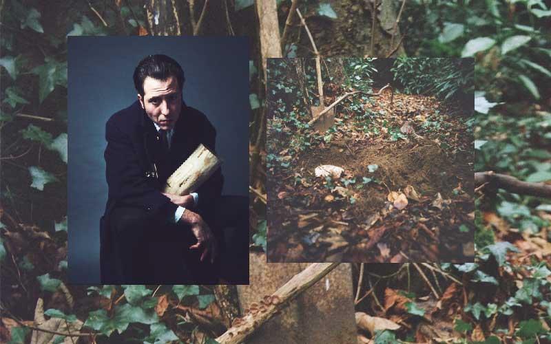 Edgar Sarin