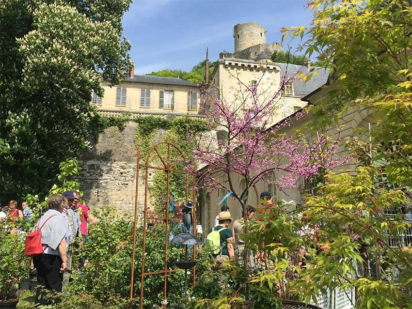 Plantes - La fête des plantes de La Roche-Guyon