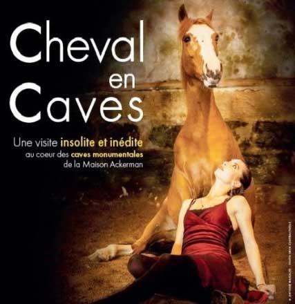 Cheval en caves - Akerman