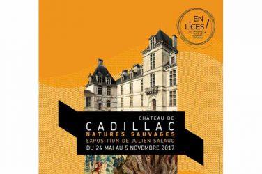 tapisserie au château de Cadillac
