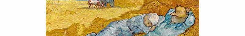 moisson- Une moisson d'or et de couleurs