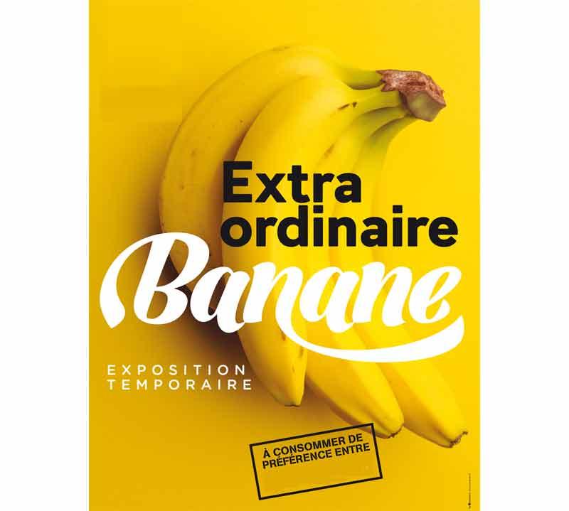 Banane - Extra ordinaire banane