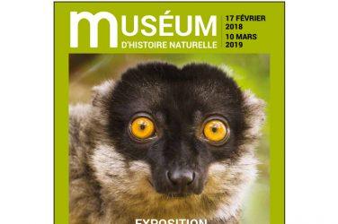 génie de la nature au Muséum d'histoire naturelle du Havre
