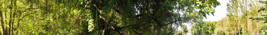 Rousseau : Parc Jean Jacques Rousseau