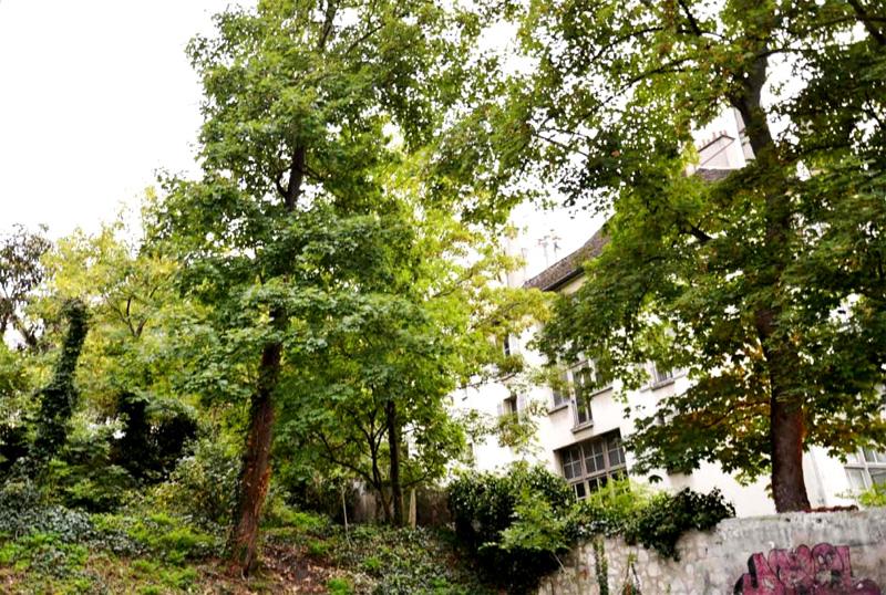Villa Extraordinaire : le boncoin