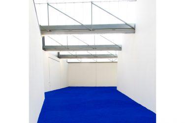 Yves Klein : Pigment Pur