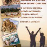 Safari en Tunisie