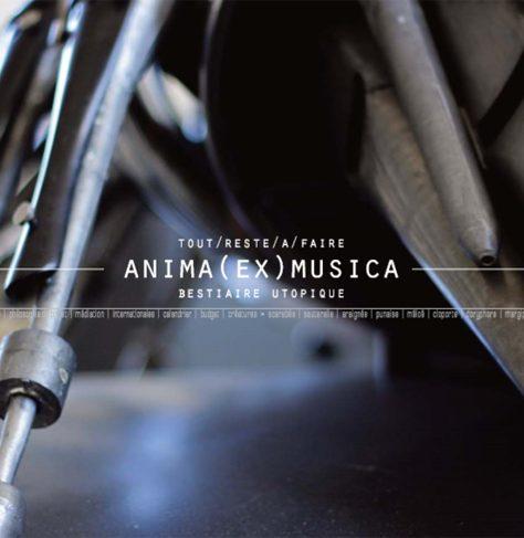 ANIMA EX MUSICA