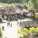 Bali Goa Gajah 5