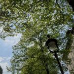 Paris 19 -2020 – Photo by Jean Marc Lebeaupin (124)