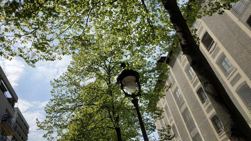 Paris 19 -2020 - Photo by Jean Marc Lebeaupin (125)