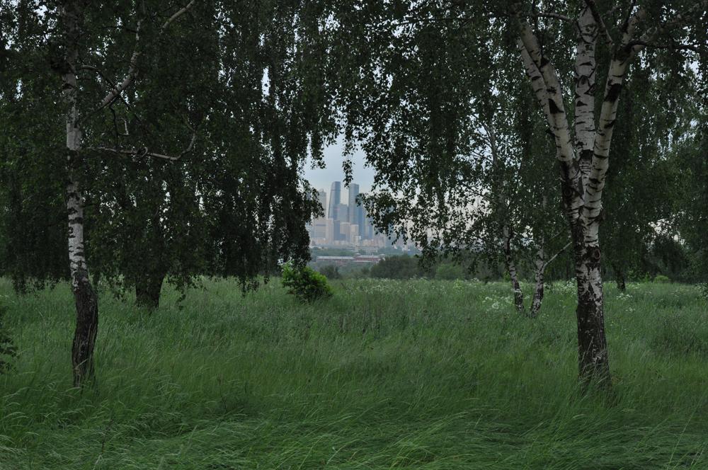 Photo Anna Pavlikovskaya - Walking boldly from the quarantine to the summer (21)