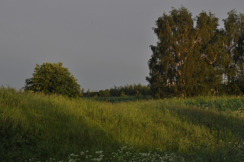 Photo Anna Pavlikovskaya - Walking boldly from the quarantine to the summer (40)