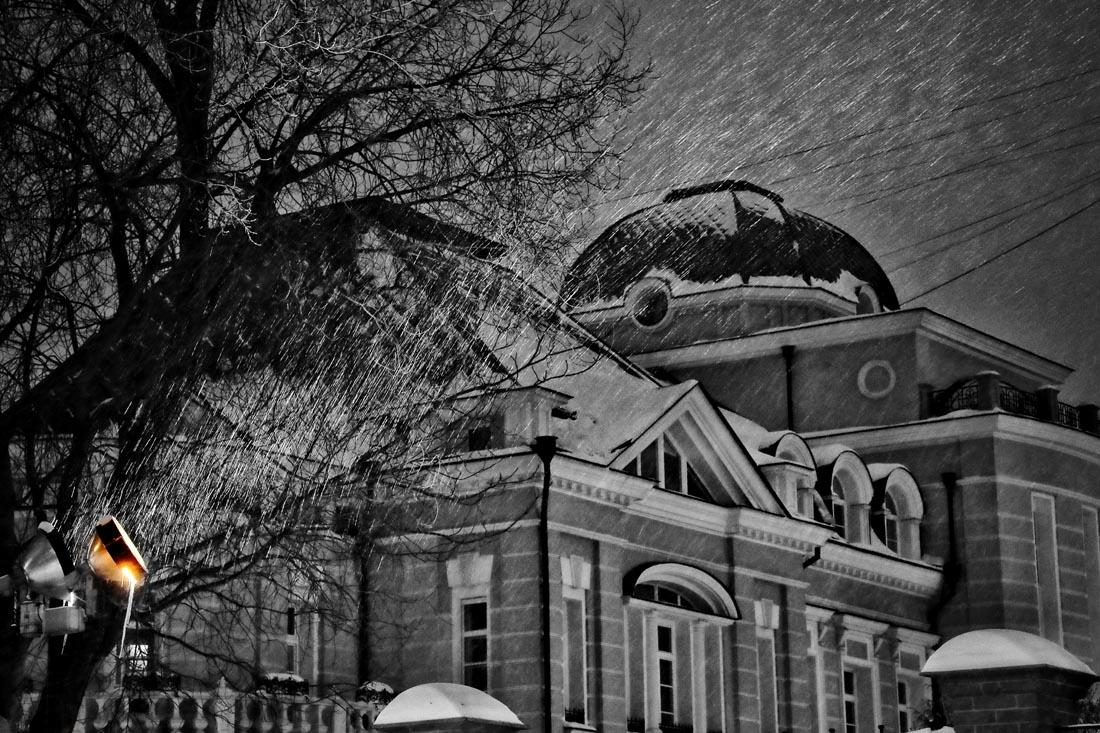 Fantasy RÊVERIE by  Anna Pavlikovskaya