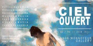 Ange Monnoyeur Gallery